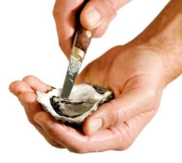 Austern öffnen mithilfe des Austernmessers